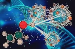 CRISPR ilə QİÇS müalicə edilib