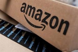 Fransa ekoloqları Qara cümə səbəbi ilə Amazon-a qarşı çıxıb