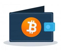 Balansında ən çox Bitcoin olan 5 cüzdan