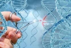 ./assets/uploads/news/2019/12/29/genlerin-bir-birini-sevib-sevmediyini-oyrenmek-ucun-texnologiya-hazirlanir.jpg
